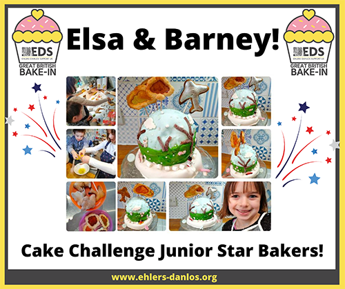EDS UK Bake-In cake challenge junior winners