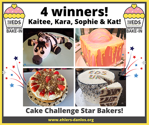 EDS UK Bake-In cake challenge adult winners